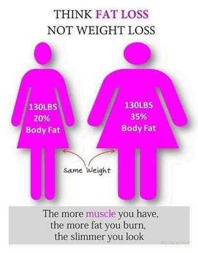 fat-percentage