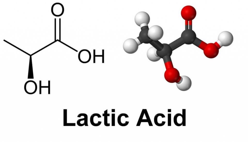 LacticA
